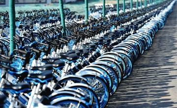 共享单车侵占道路 绵延3公里