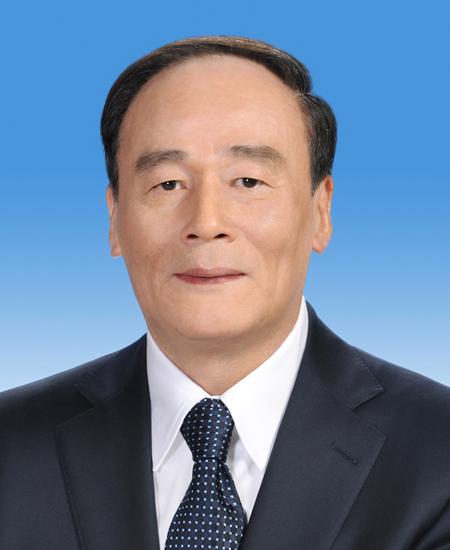 王岐山当选国家副主席