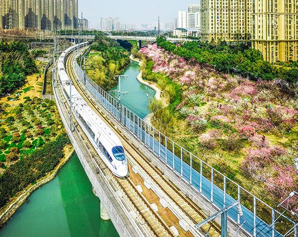 凤凰网安徽一周图片精选:开往春天的列车