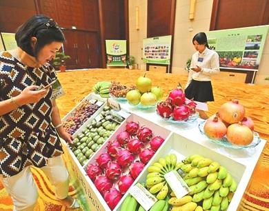 陕西农产品跨境电商交易平台上线