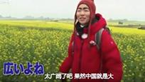 日本搞笑艺人游云南:油菜花田都和东京一样大!