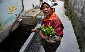 村民生女儿那年养了条鱼 如今鱼49岁