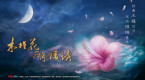 《木槿花西月锦绣》曝概念海报 荣信达再度护航超级IP