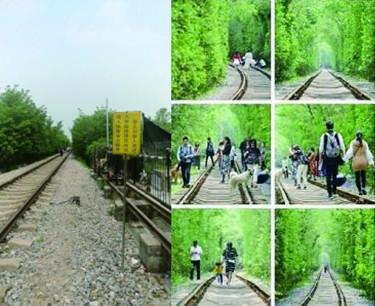 """南京警方劝游客勿赴""""爱情隧道"""":就1条铁路2排树"""