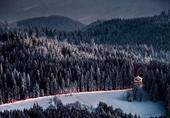 黑森林 德国最古老的森林