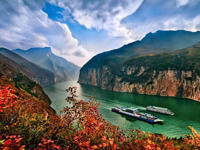 重庆市大力支持三峡库区特色农产品发展