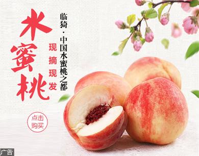 【现摘现发】2018年新鲜水蜜桃子5斤包邮大桃子