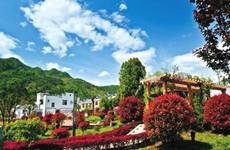 陕西省新增加19个全国一村一品示范村镇