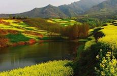 陕西省委召开秦岭北麓专项整治工作组会议