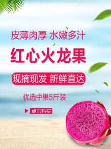 夏日推荐 | 火龙果现摘现发