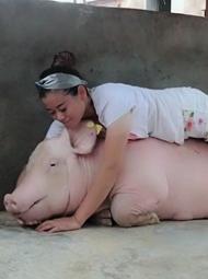 女子与400头猪人工呼吸 年入百万