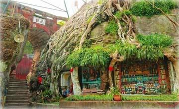 一棵古树里建千年古寺 至今是未解之谜