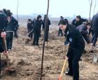 虞城县城管局积极参加市全民春季义务植树活动