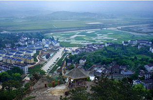 """安徽枞阳:小秸秆""""变身""""绿色大产业"""