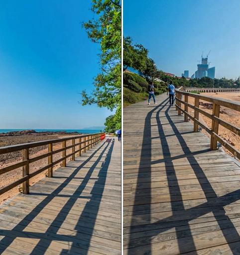 凤观青岛  海滨木栈道西起团岛环路,东至石老人公园沿海步行道,全长