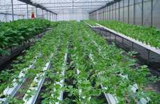 推动可持续发展 陕西加强农业农村绿色发展技术研发
