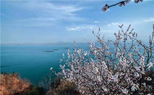 嵩县陆浑湖赏春景 品尝鱼羊之鲜