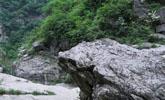 男子上山挖竹笋,挖出一块奇特的石头,回家发现不寻常