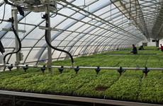 提高脱贫质量 陕西推动完善建立200个以上农技协会