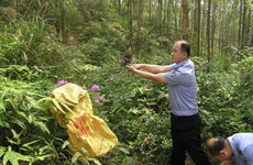 加强市场监管 西安市多措并举保护野生动植物