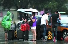 今年陕西省平均降水量比多年均值偏多10.7%