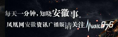 中共安徽省委十届九次全会在合肥召开,五人递补为省委委员
