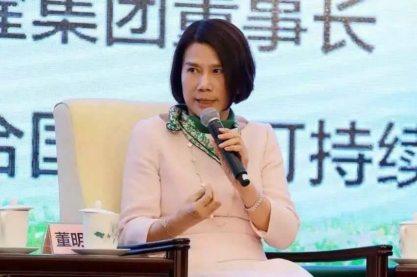珠海银隆股权结构曝光:董明珠持股7.5%