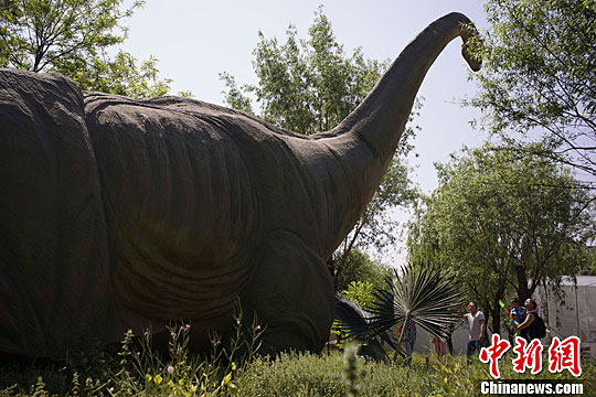 市民带孩子参观巨型仿真恐龙图片