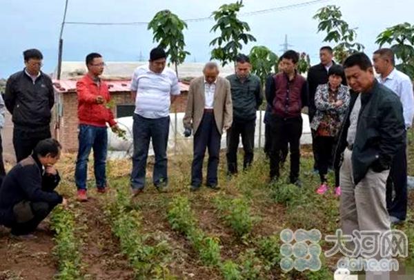 淅川县组织扶贫村干部考察陕西杨凌大樱桃产业