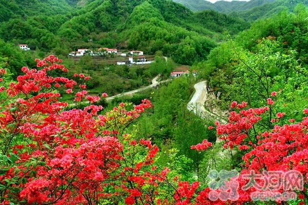 风景如画的美丽乡村