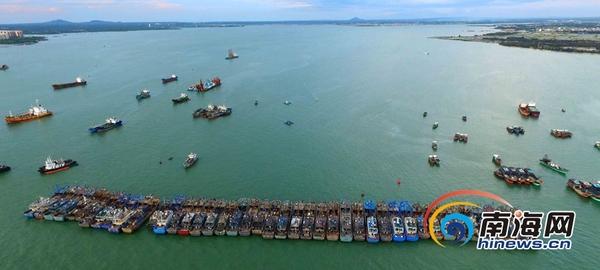 儋州白马井有多少人口_儋州白马井中心渔港渔市喜迎旺季