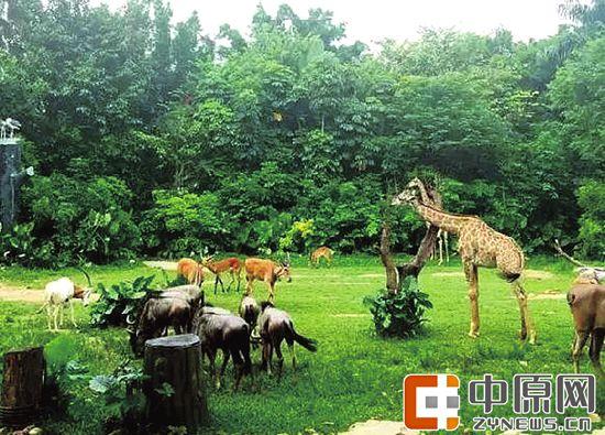 海洋天地,宠物世界,湿地森林公园,主题乐园及其配套设施,1000亩用于