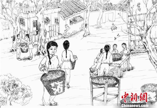 成都90后女大学生手绘成都百年水碾河