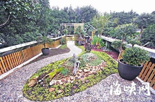 """福州白马河公园办公楼屋顶建""""空中花园"""""""