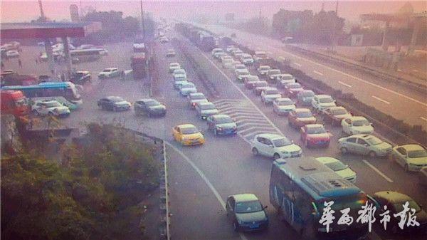 成雅 成自泸高速现返程高峰