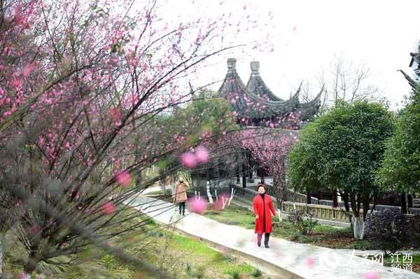 古风一起构成一道靓丽的风景,让前来赏梅过新年的游客拍照流连忘返,为