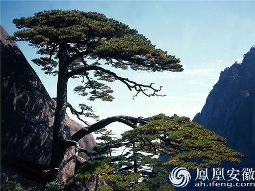 黄山风景区接待游客3.4972万人次