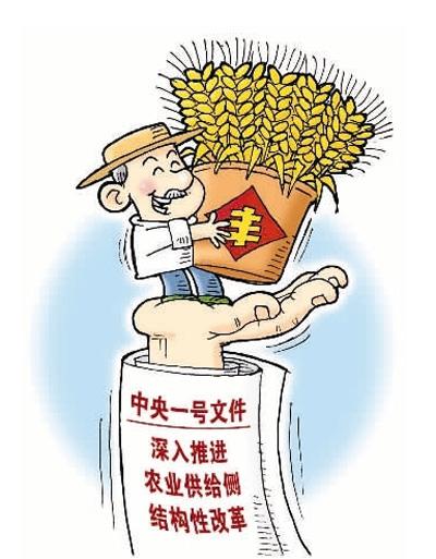 """农民""""钱袋子""""今年会更鼓(热点聚焦)"""