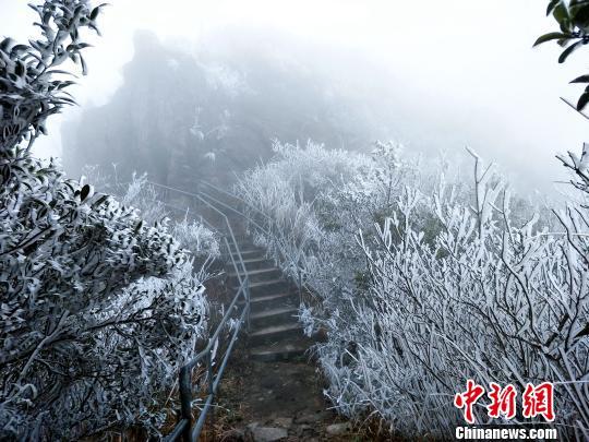 广东连山县金子山再降春雪(图)