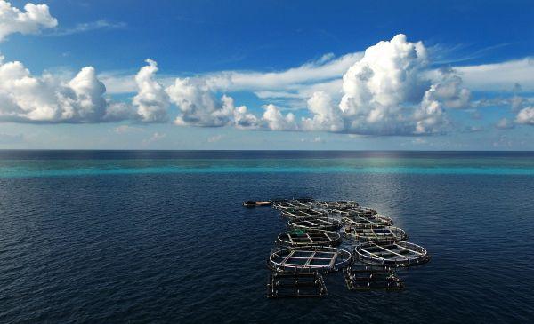 美智库炒作中国南海岛礁工程完工 称部署装备近在眼前