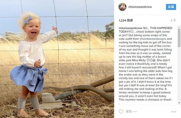 2岁女童开心拍照 浑然不知身边就是巨型毒蛇-凤凰新闻