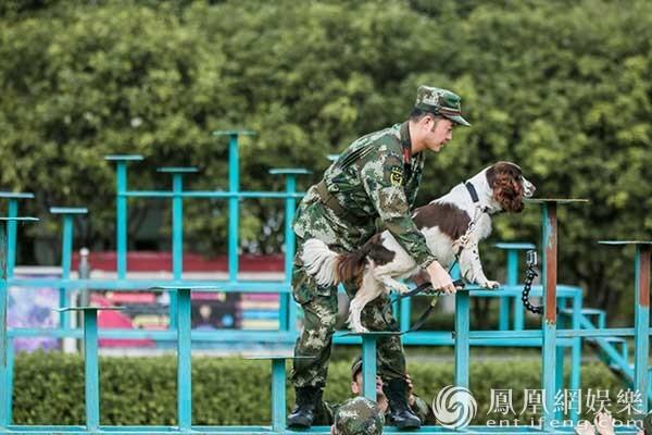 《奇兵神犬》高萌幼犬亮相 杨烁姜潮遇丢犬危机