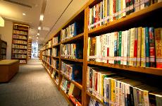 受国际欢迎 这些书做对了什么?
