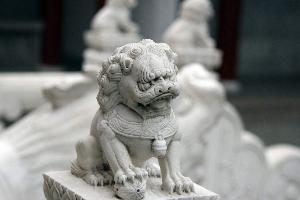 王信成居士詳談獅子用法
