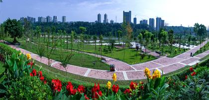 环境整治 城乡面貌大改观