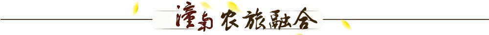 """各级领导说安居古城:让人""""记得住乡愁"""""""