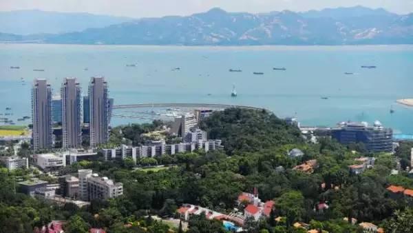 8条线个地标建筑和景点让你玩转深圳! 水族资讯 南京水族馆第6张