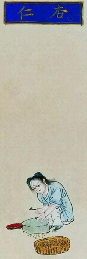 王家葵谈中国古典文学中的毒药和解药