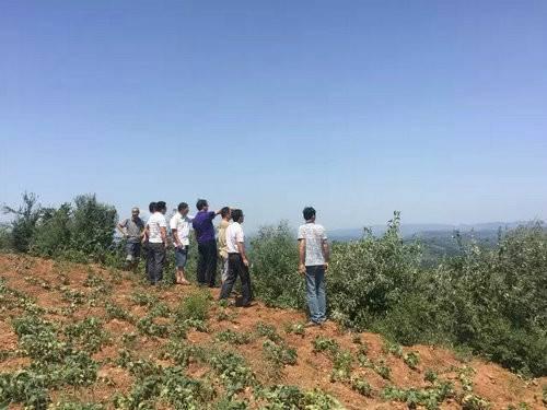 程金龙带队到汝阳县刘店镇岘山村实地考察并做乡村旅游发展规划(组图)