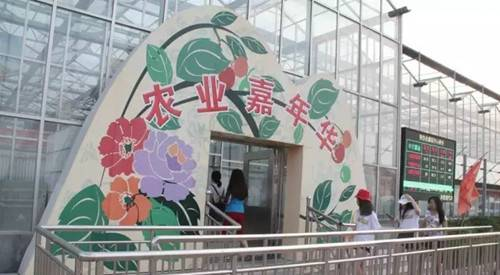 汝阳中农富源农业嘉年华热带风情花卉果蔬乐园